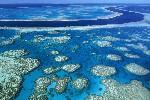 Australia Great Barrier Reef FleeAmerica